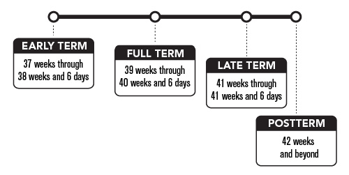 Know_Your_Terms_timeline